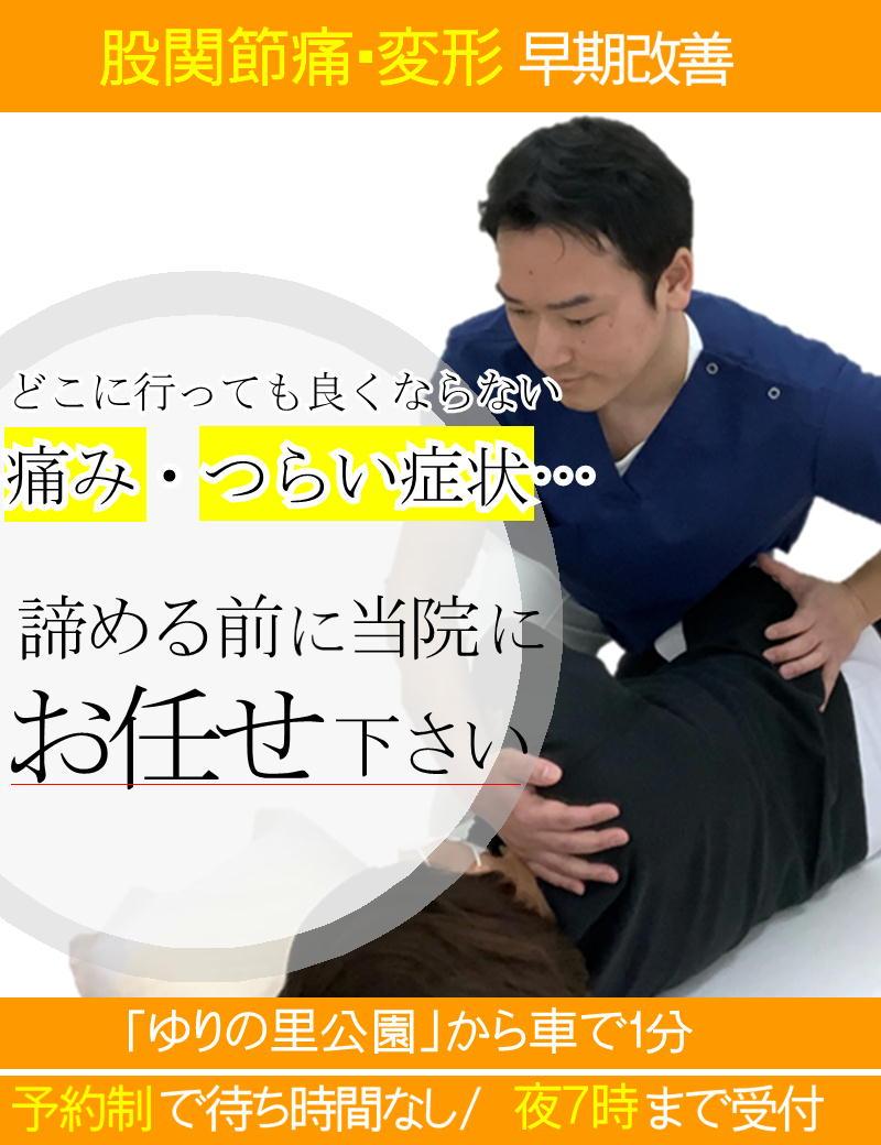 股関節の痛み・股関節の変形の痛みを早期に改善