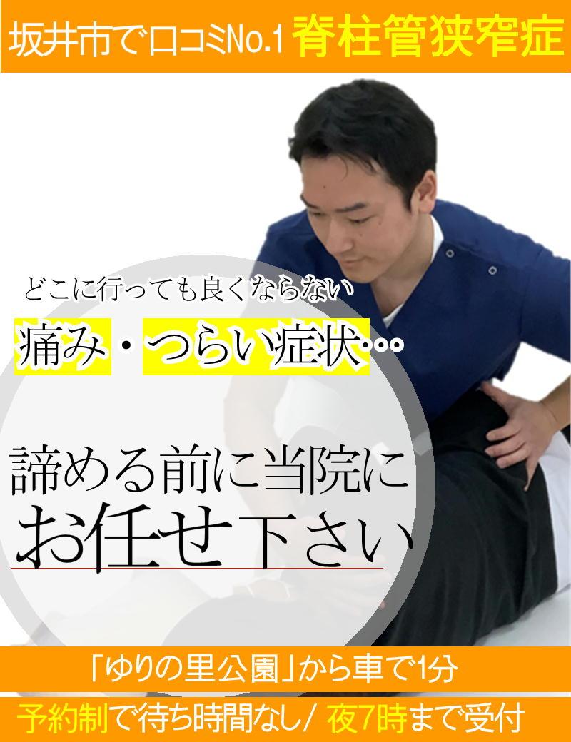 腰部脊柱管狭窄症の痛みを改善-坂井市春江町ひまわり整骨院