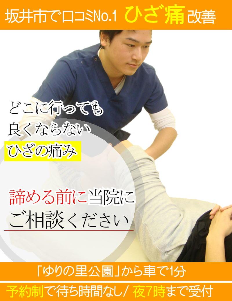 ひざの痛みを改善-坂井市春江町ひまわり整骨院
