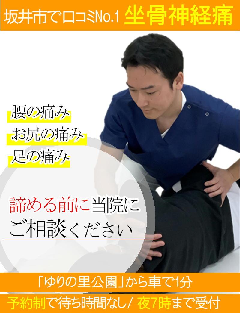 坐骨神経痛の改善-坂井市春江町ひまわり整骨院